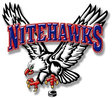 Beaver_Valley_Nitehawks_Logo